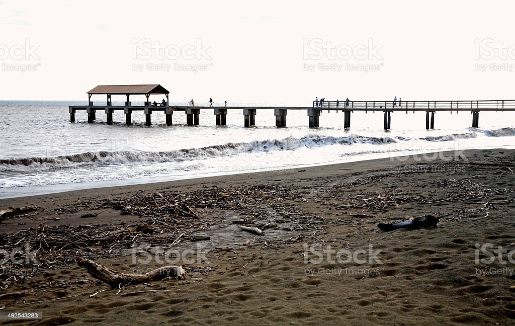 Pier,Surf And Beach stock photo