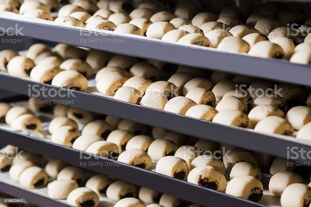 Pies on the shelves. stock photo