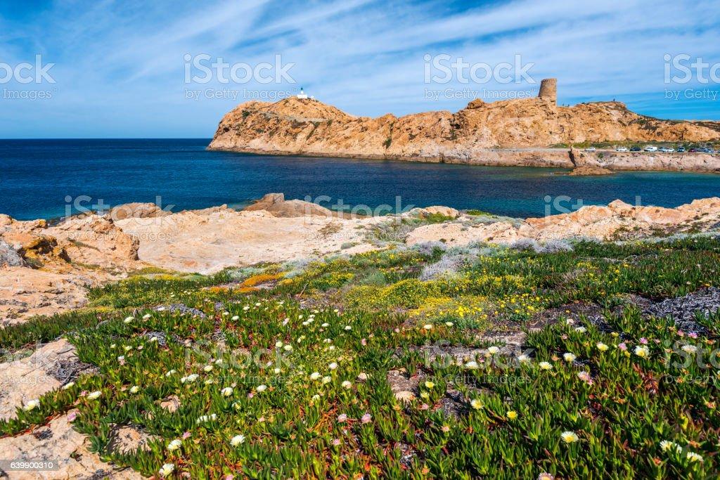 Pietra Islet landscape in Corsica stock photo
