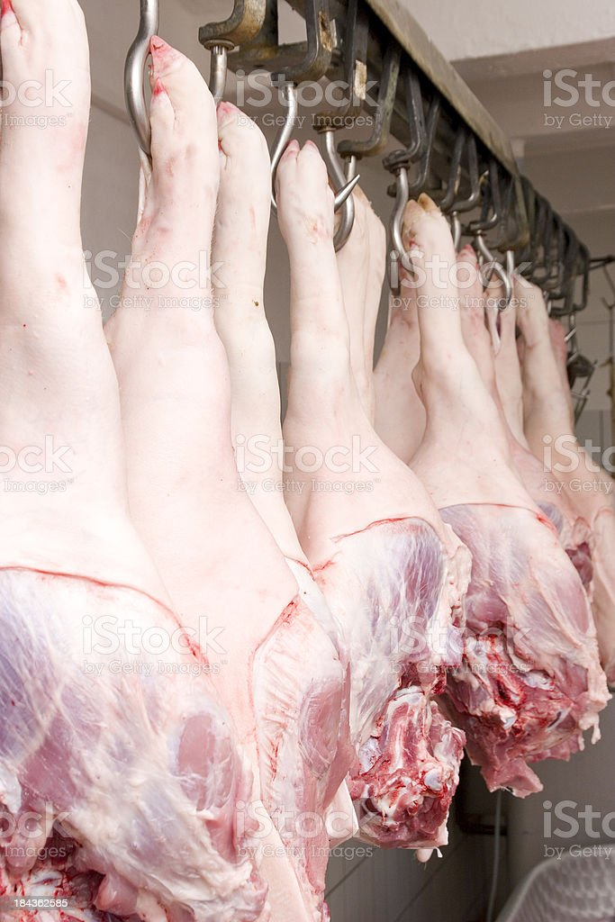 Pig Hips stock photo