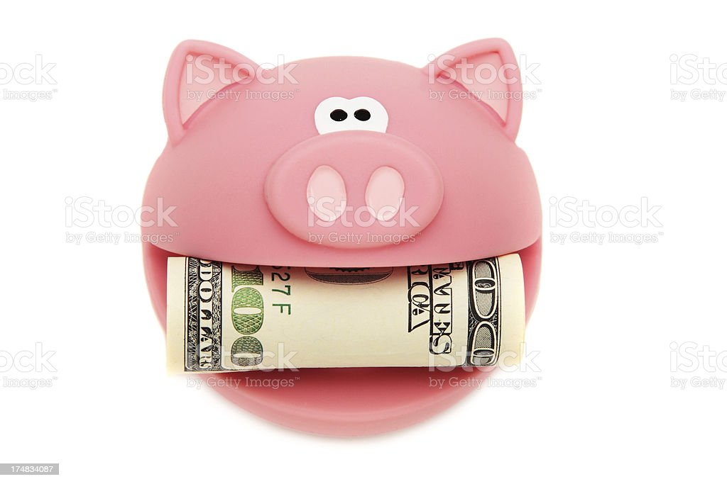 Pig Hold One Hundred Dollars Bill royalty-free stock photo