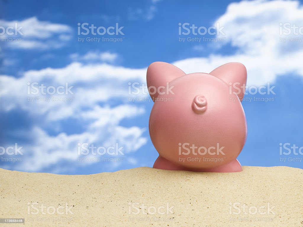 pig looking into the sky royalty-free stock photo