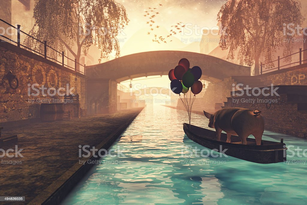 Pig on boat in the canal, leaving town stock photo