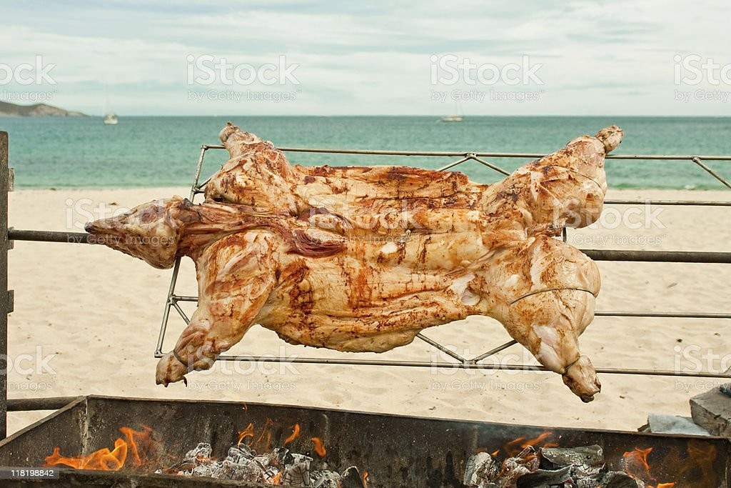 Pig Roast royalty-free stock photo