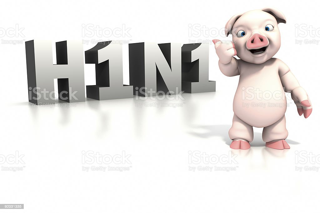 Pig standing in front of H1N1 text royalty-free stock photo