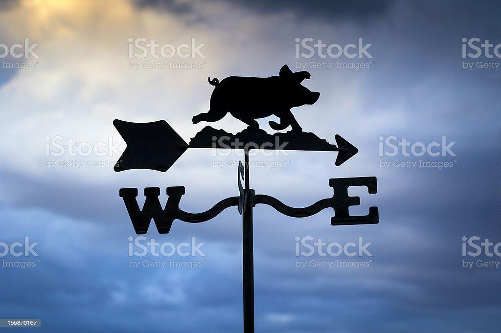 Pig Weathervane stock photo
