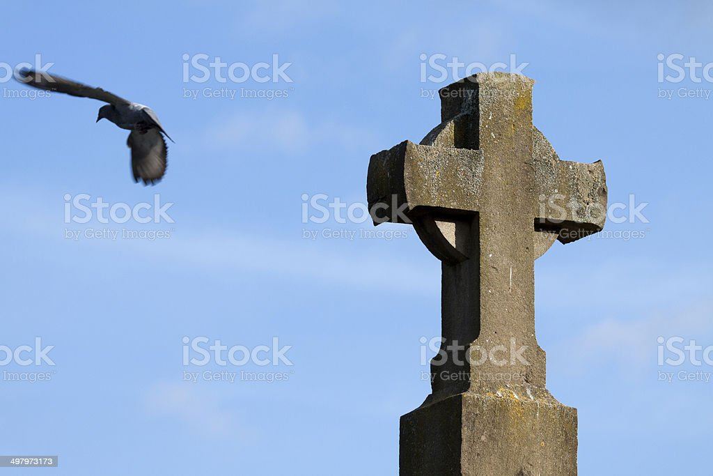 Pigeon And Cross II royalty-free stock photo