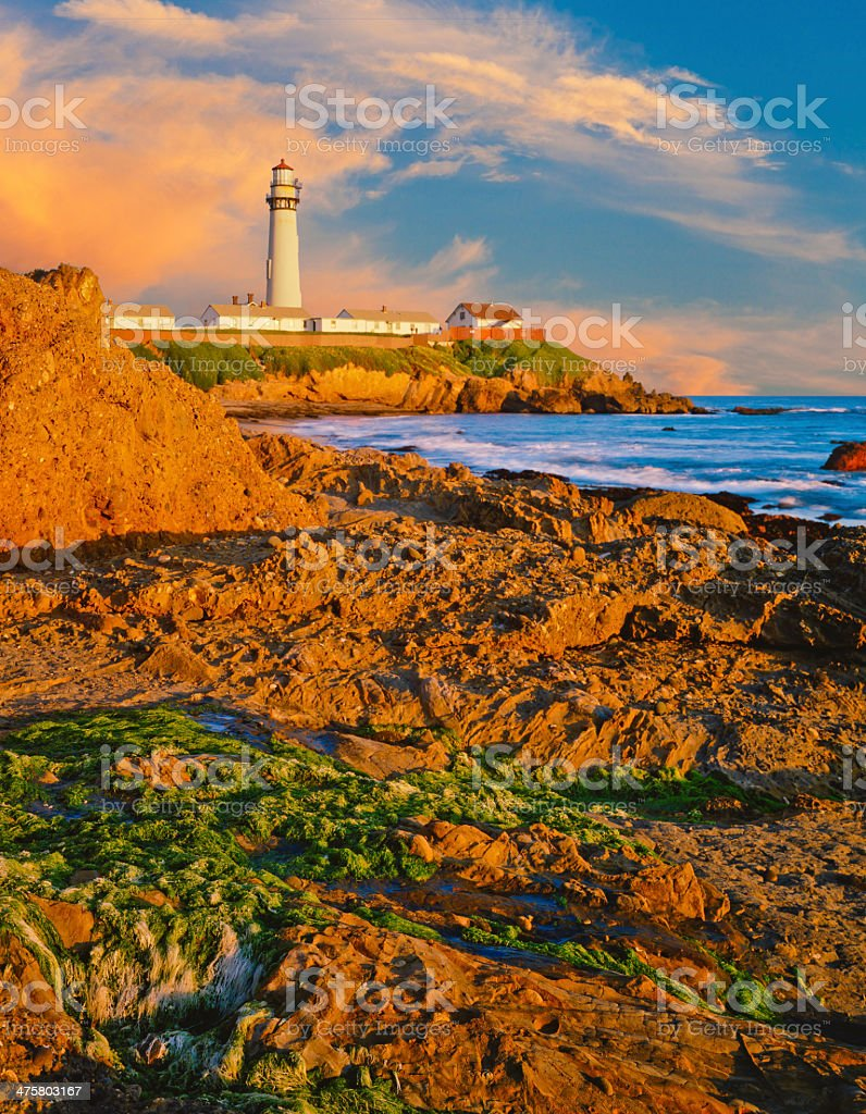Pigeon Point Lighthouse, California  (P) royalty-free stock photo
