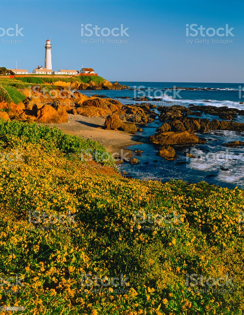 Pigeon Point Lighthouse on California Coastline (P) royalty-free stock photo