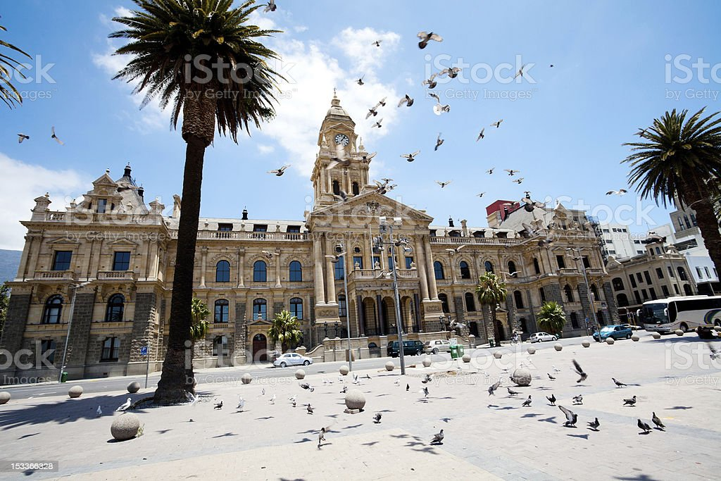 pigeons flying over city hall of cape town stock photo