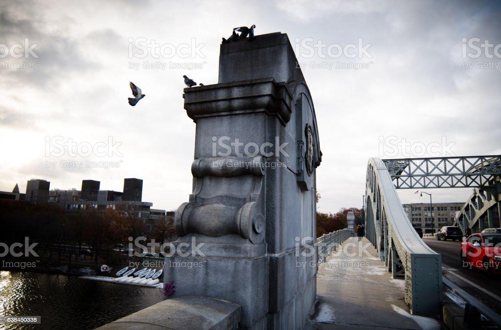 Pigeons Gather on a Marble Bridge stock photo