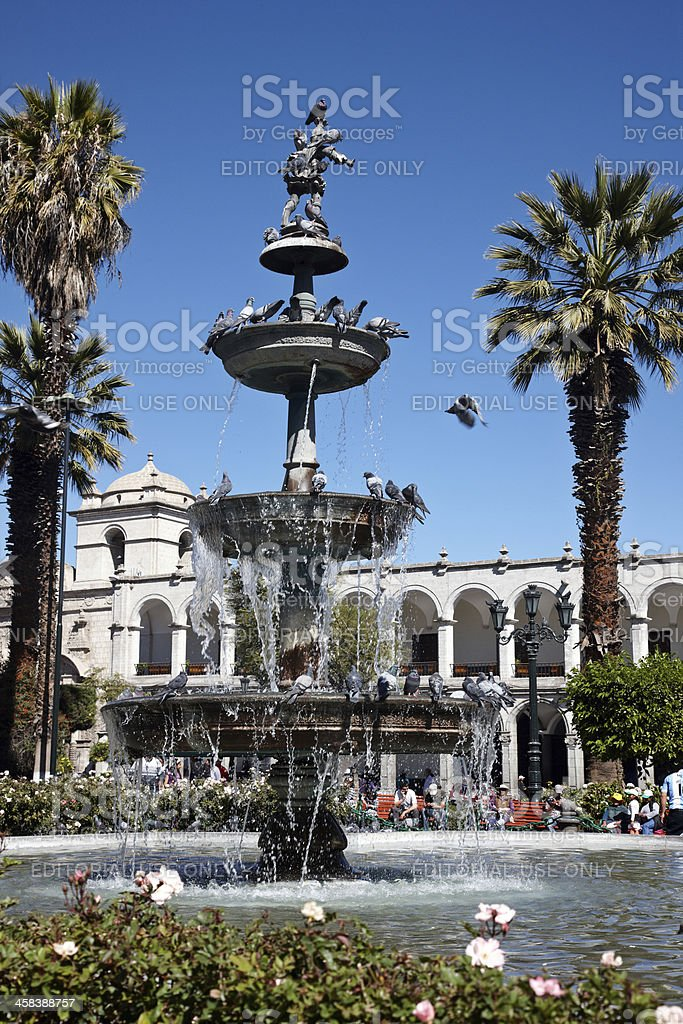 Pigeons on the fountain in Plaza De Armas Arequipa royalty-free stock photo