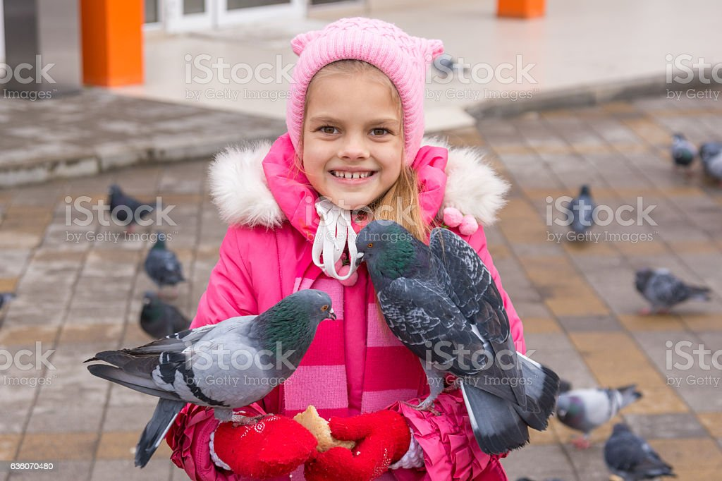 Pigeons sit on a girl that feeds them stock photo