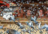 Pigeons taking off at Kathmandu Durbar Square