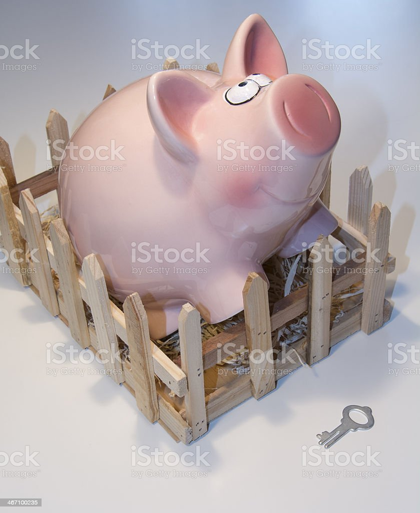 Piggy bank and a key royalty-free stock photo