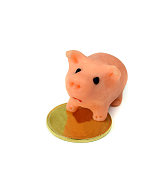 piggy bank and gold coin.Isolation