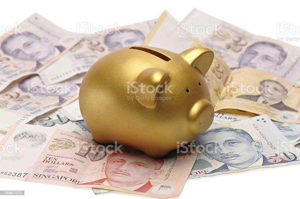 Piggy bank and money stock photo
