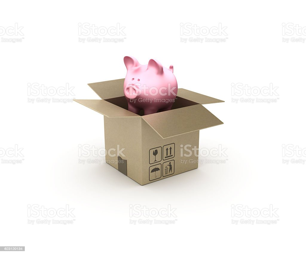 Piggy Bank and Open CardBoard Box - 3D Rendering stock photo