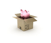 Piggy Bank and Open CardBoard Box - 3D Rendering