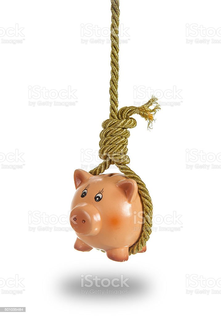 Piggy bank hanging on hangman noose over white stock photo