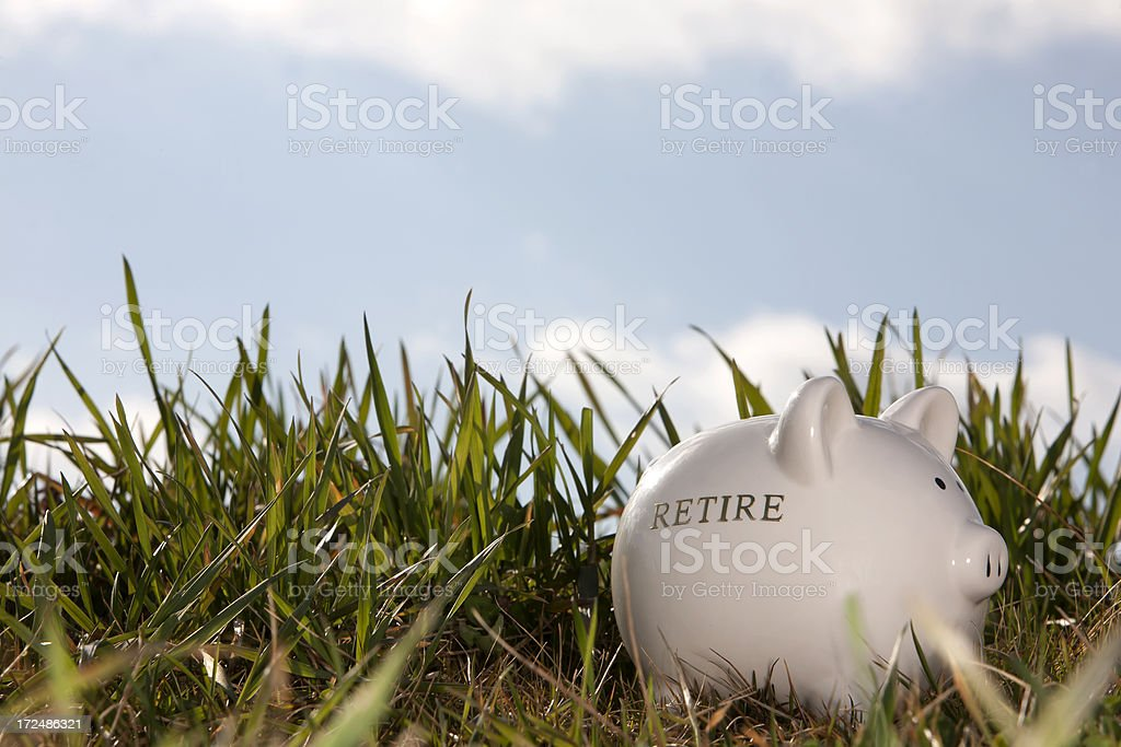 Piggy bank in the grass royalty-free stock photo