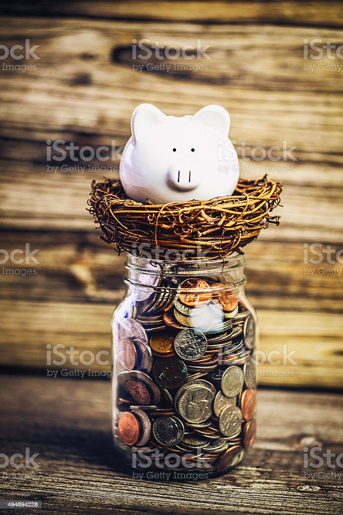 Piggy Bank Nurturing his Nest Egg stock photo