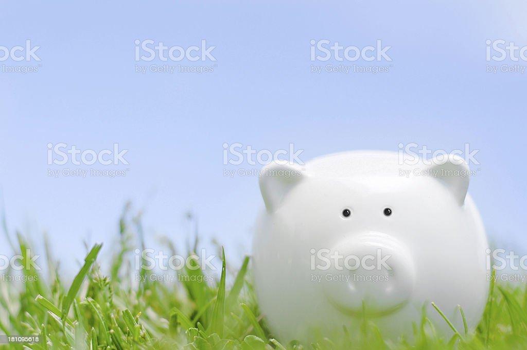 Piggy bank on grass royalty-free stock photo