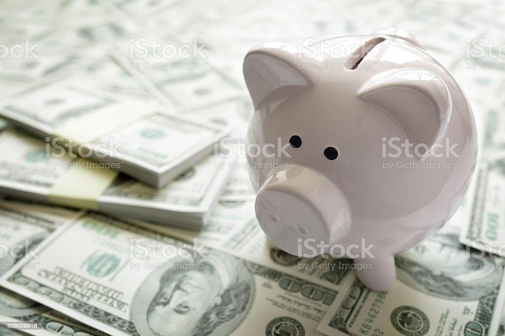 Piggy bank on money stock photo