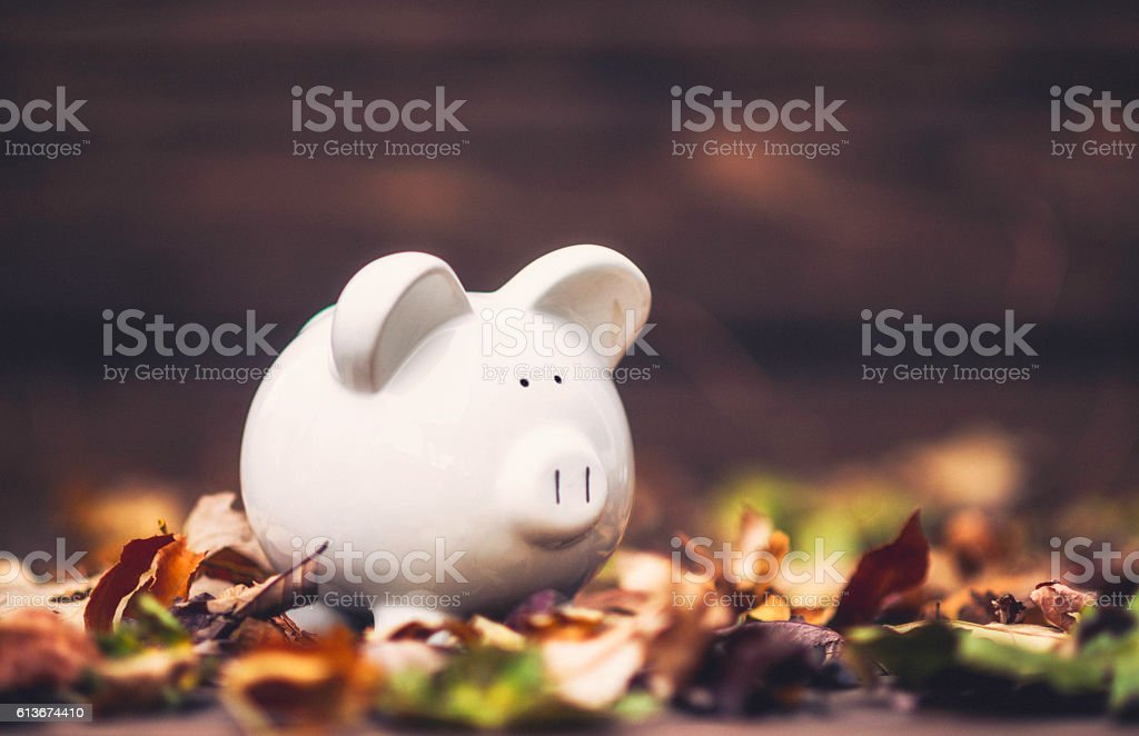 Piggy bank standing in fall leaves. Fall savings concept stock photo
