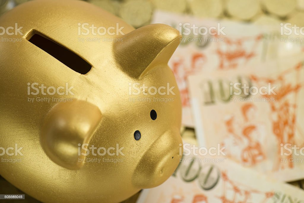 Piggy Bank with dollars banknotes. stock photo