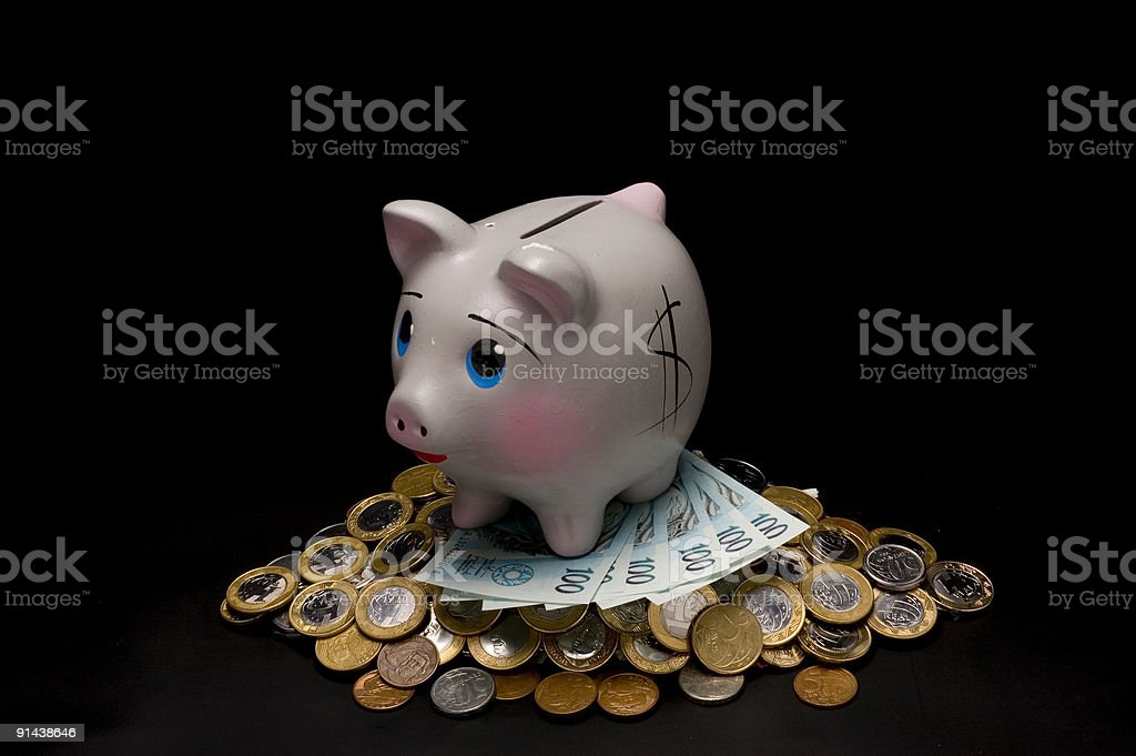 Piggy Bank with money royalty-free stock photo