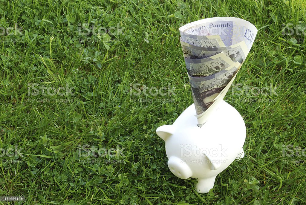 Piggy bank with notes royalty-free stock photo