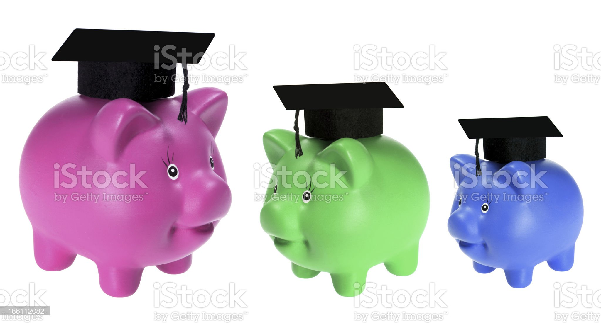 Piggy Banks with Mortarboards royalty-free stock photo