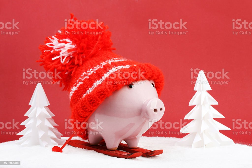 Piggy box with red hat standing on red ski and ski sticks stock photo