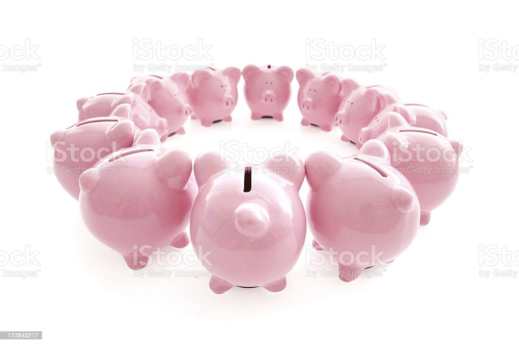 Piggy Conference royalty-free stock photo