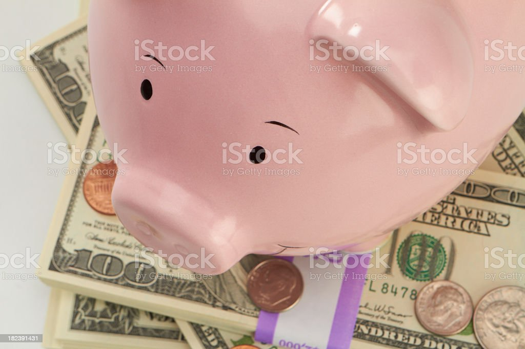 Piggy on top stock photo