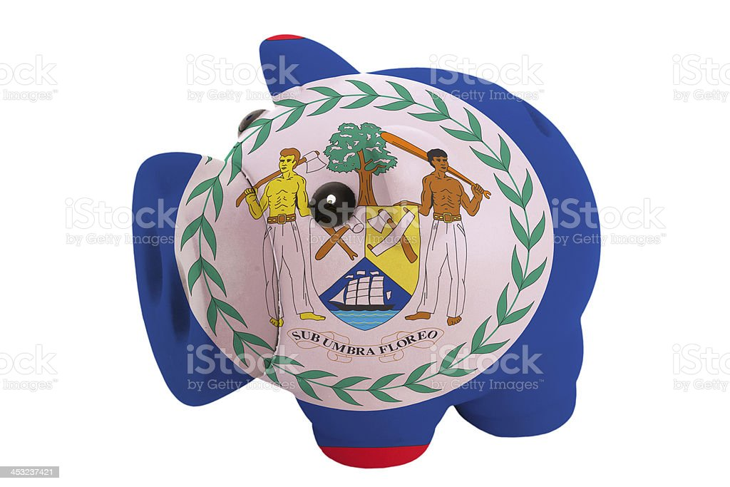 piggy rich bank in colors national flag of belize stock photo