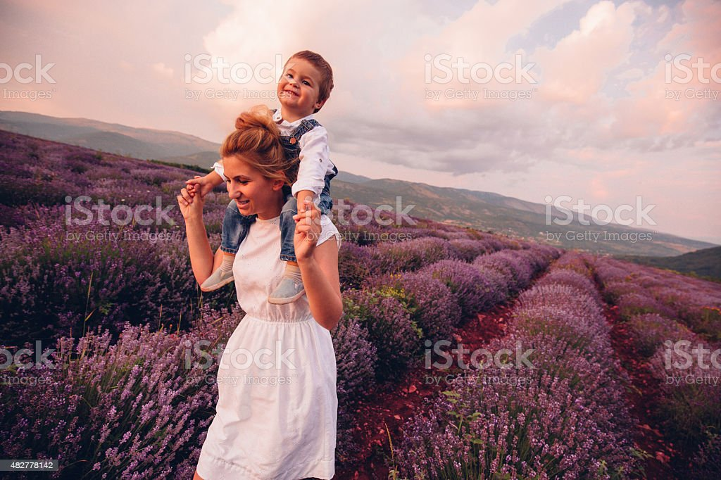 Piggyback ride at the lavender field stock photo