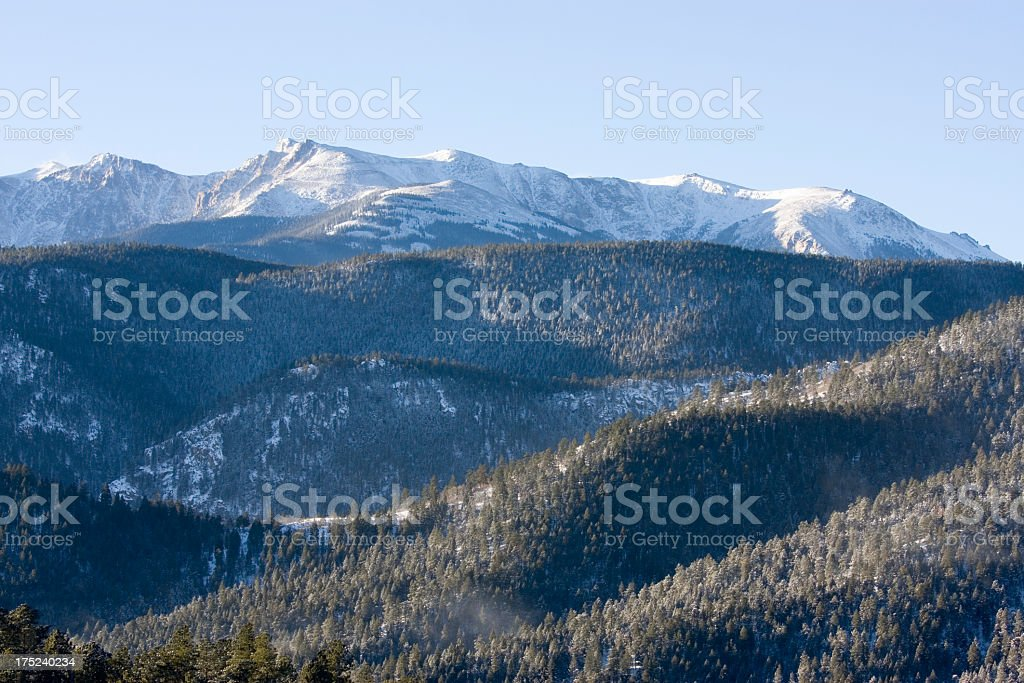 Pike National Forest in Snow royalty-free stock photo