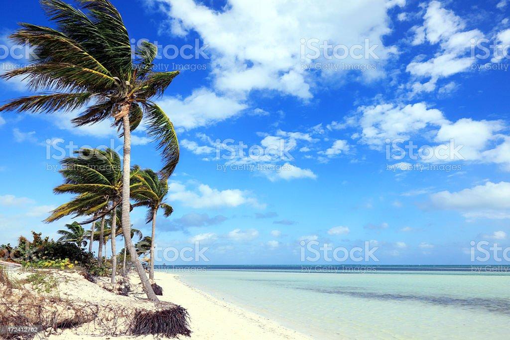 Pilar beach stock photo