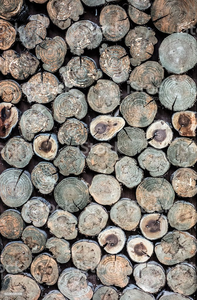 pile natural wooden logs background stock photo