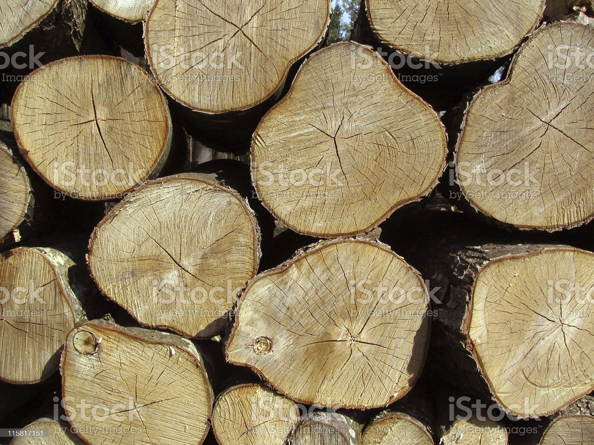 Pile of Aging Logs royalty-free stock photo