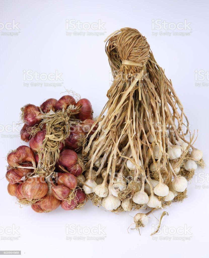 pile of beautiful onions and garlic. stock photo