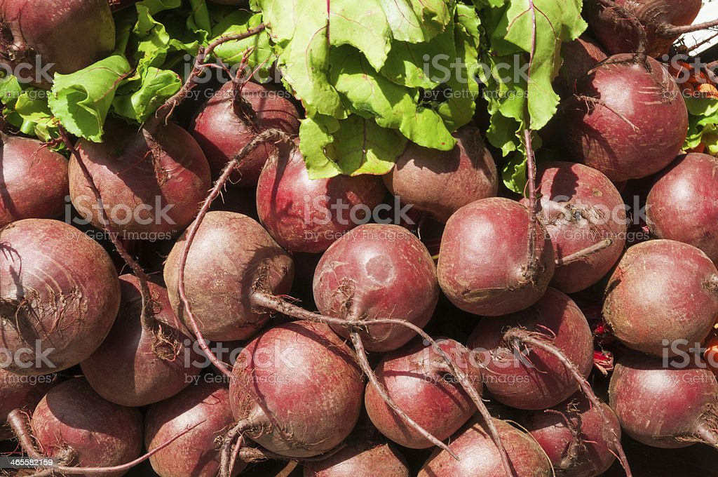 Pile of Beets royalty-free stock photo