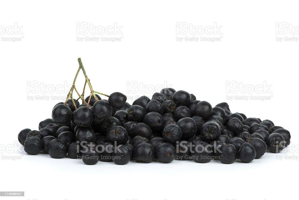Pilha de chokeberries preto foto de stock royalty-free