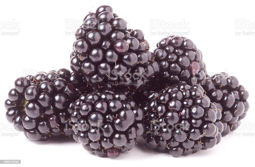 pile of blackberry isolated on white background stock photo