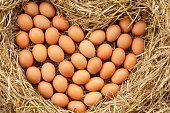 pile of brown organic eggs on straw