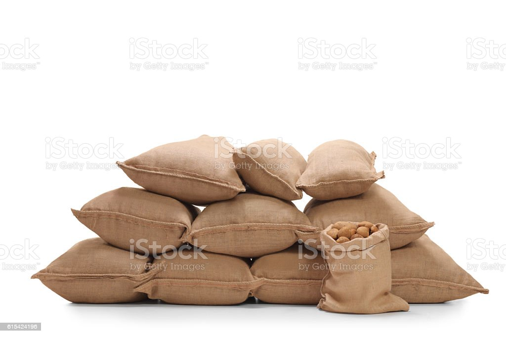Pile of burlap sacks filled with potatoes stock photo