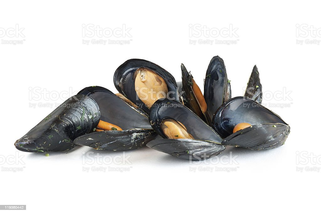 A pile of cooked mussels on a white background stock photo