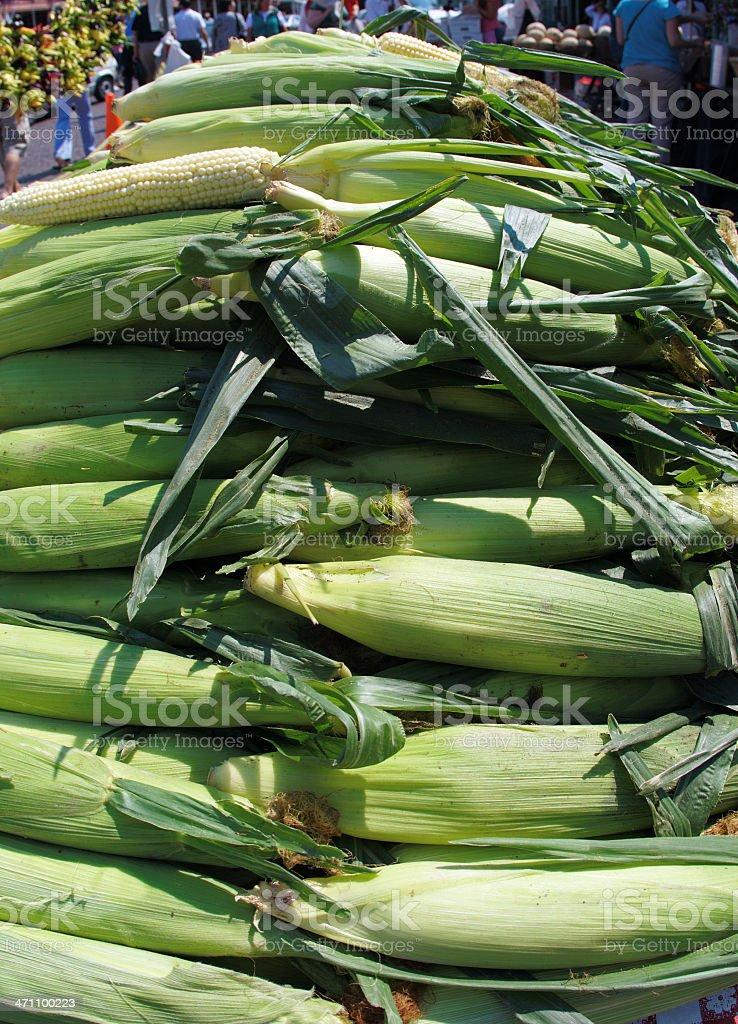 Pile of corn stock photo